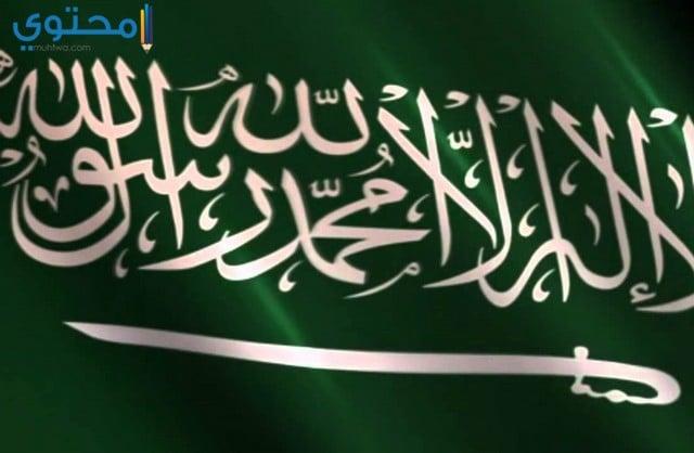 علم السعودية الجديد