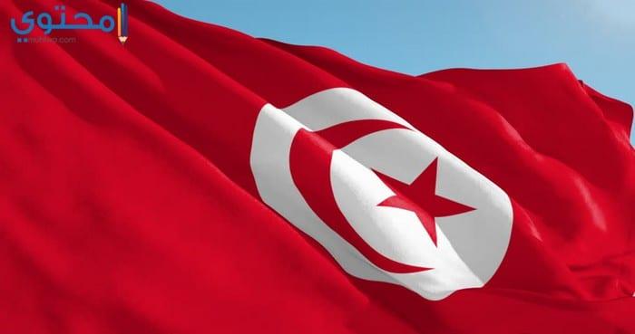 أجدد صور العلم التونسي