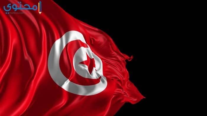 صور عن علم تونس جديدة
