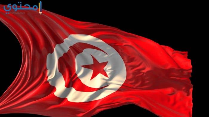 علم تونس الجديد