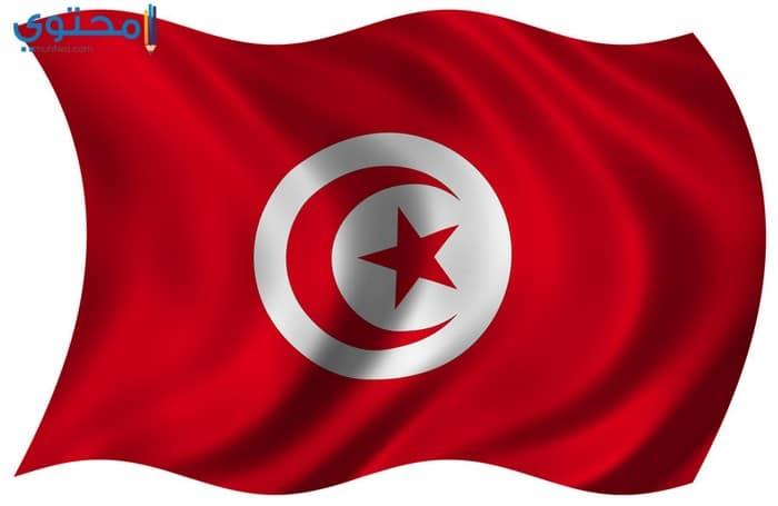 خلفيات علم تونس روعة