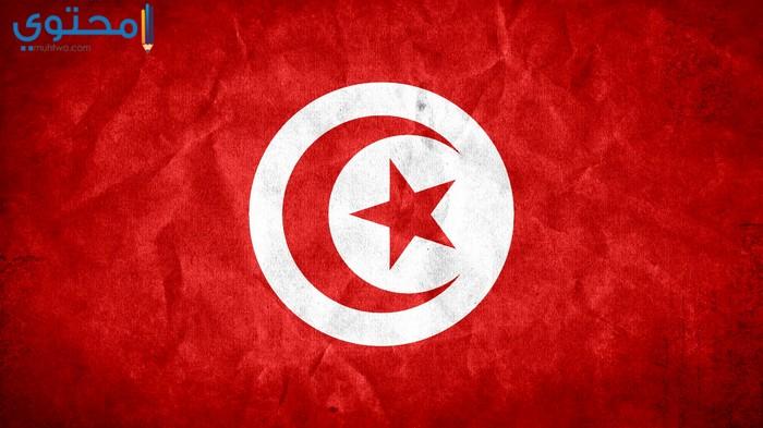 أجمل الصور لعلم تونس