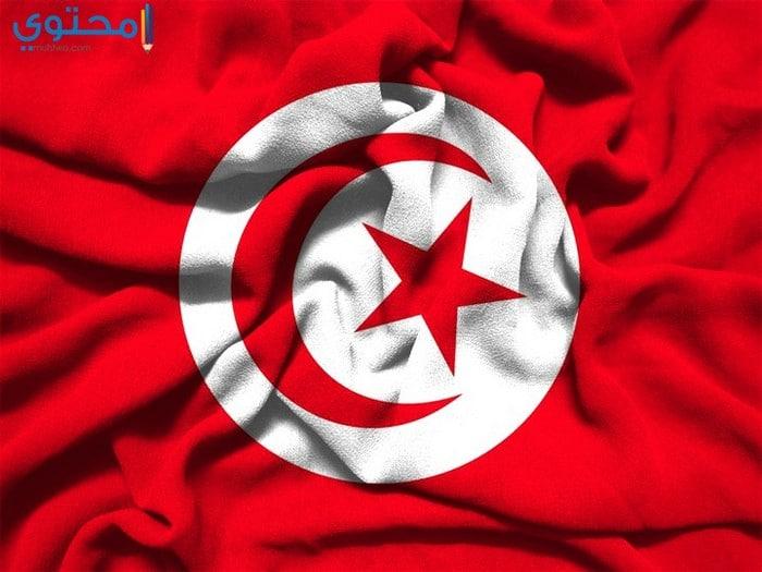 خلفيات عن علم تونس حديثة