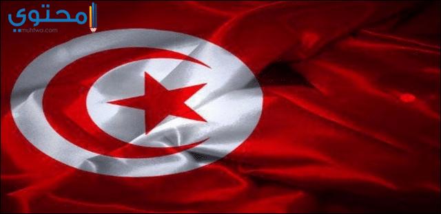 خلفيات علم تونس للفيس بوك