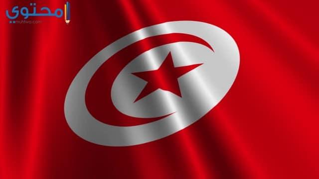 علم تونس للفيس بوك