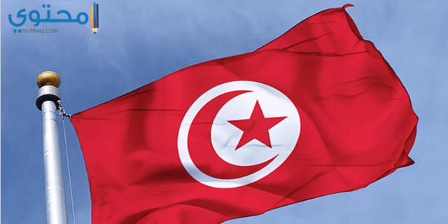 أجمل خلفيات علم تونس