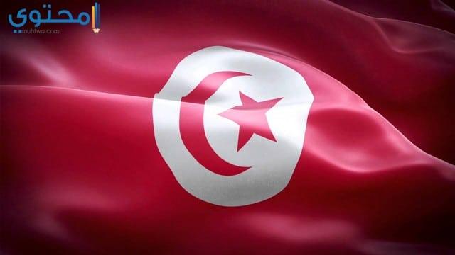 خلفيات علم تونس جديدة
