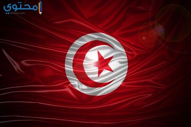 خلفيات علم تونس للأيباد