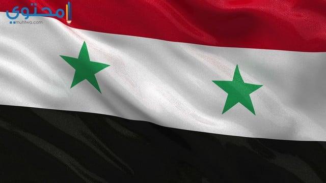 علم سوريا الجديد