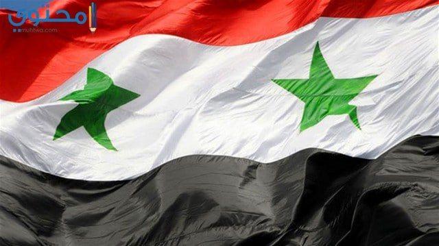 أجمل الصور عن علم سوريا