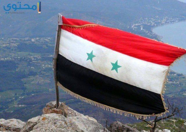 رمزيات علم سوريا الجديد للبلاك بيري