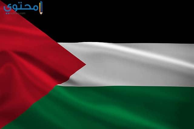 رمزيات علم فلسطين حديثة