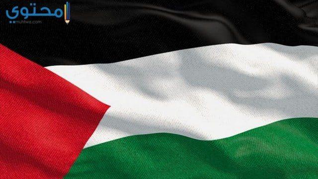 صور ورمزيات العلم الفلسطيني