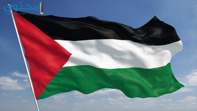 سورة علم فلسطين