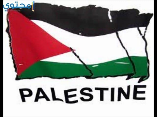 صور وخلفيات علم فلسطين 2018