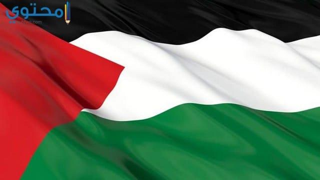 أجمل خلفيات علم فلسطين