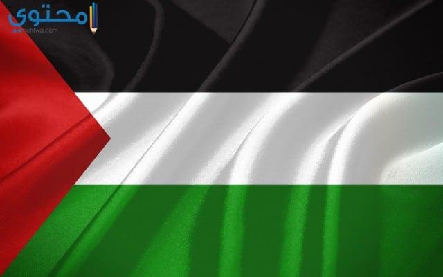 أجدد خلفيات علم فلسطين