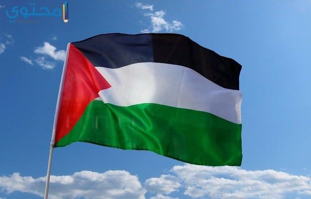 أحدث صور علم فلسطين