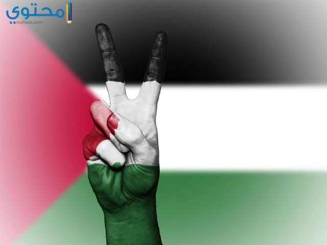 صور العلم الفلسطيني للفيس بوك