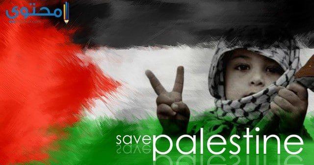 علم فلسطين فيس بوك