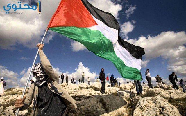 علم فلسطين 2018