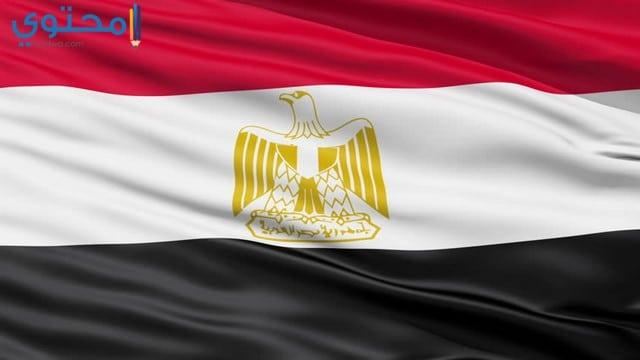 صور علم مصر للفيس وتويتر