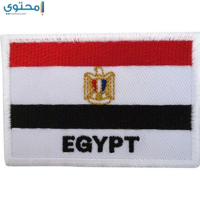 خلفيات علم مصر جديدة