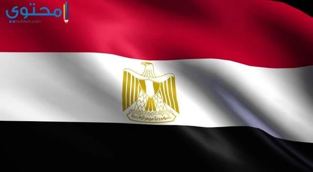 علم مصر 2021 للفيس بوك