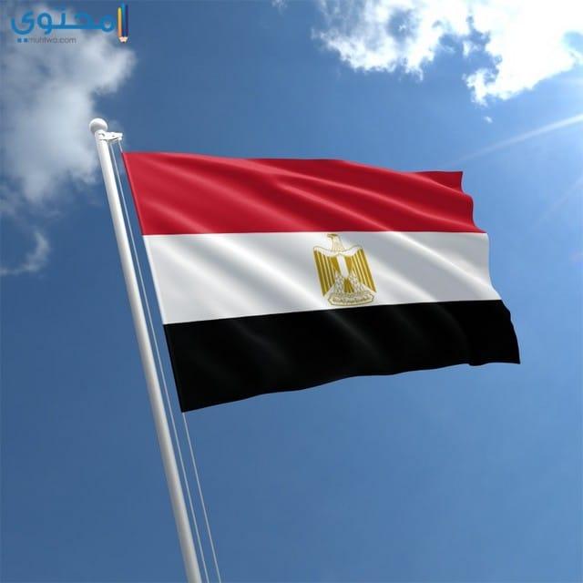 علم مصر 2021 لتويتر