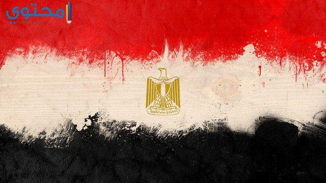 أحدث صور علم مصر 2021