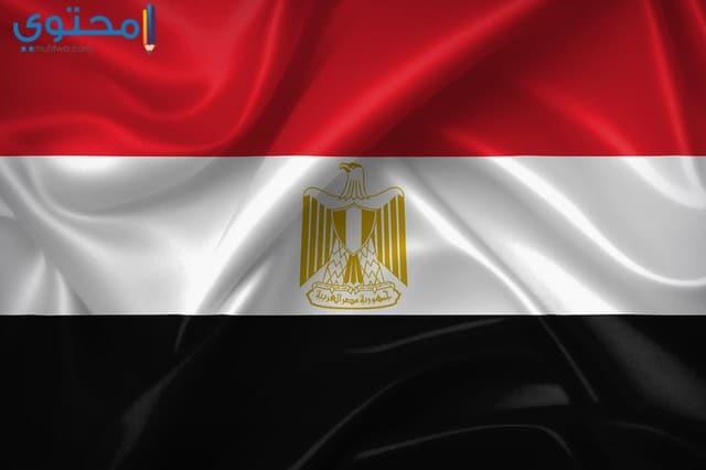 صور علم مصر 2021 HD