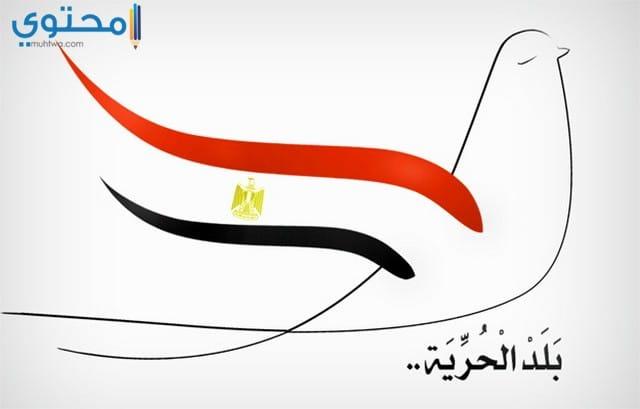 صور علم مصر روعة