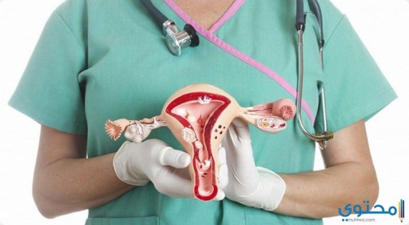 حالات خضعت لعمليات زراعة الرحم
