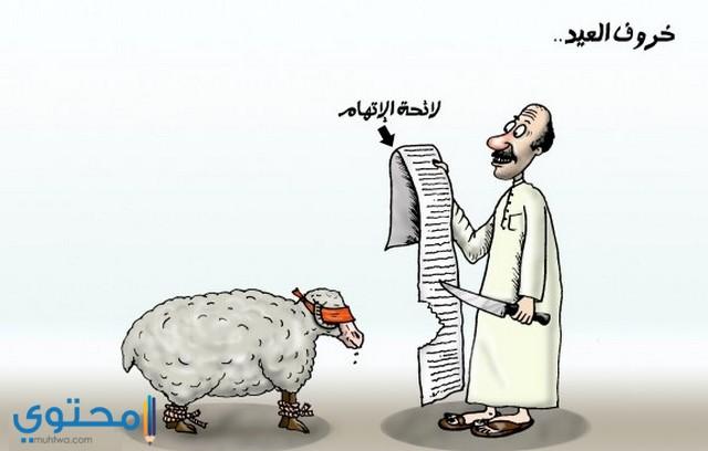 صور مضحكه عن خروف عيد الاضحي