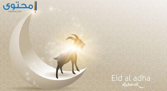 اجمل خلفيات عيد الاضحى المبارك