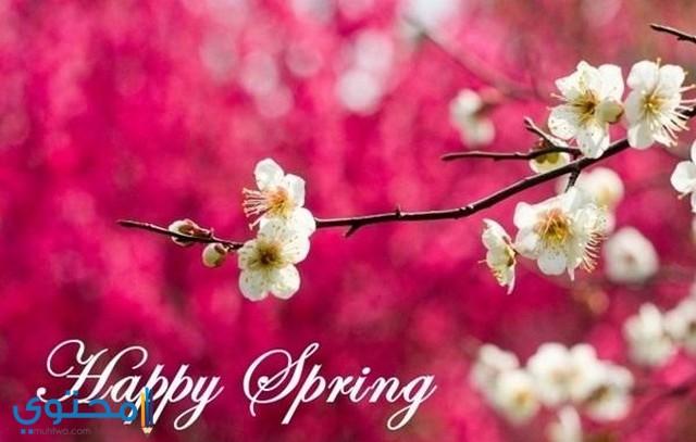 تهنئة بعيد الربيع