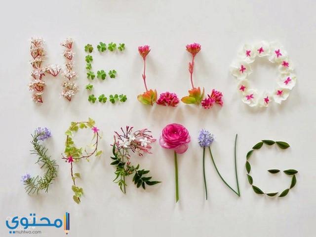 صور بوستات تهنئة بعيد الربيع