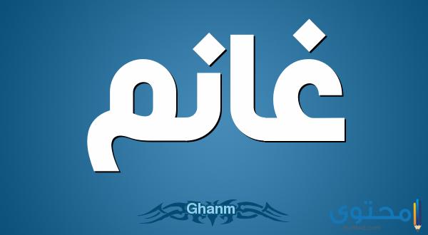 معنى اسم غانم