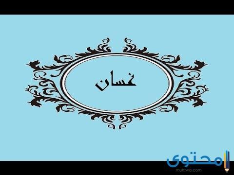 معنى اسم غسان