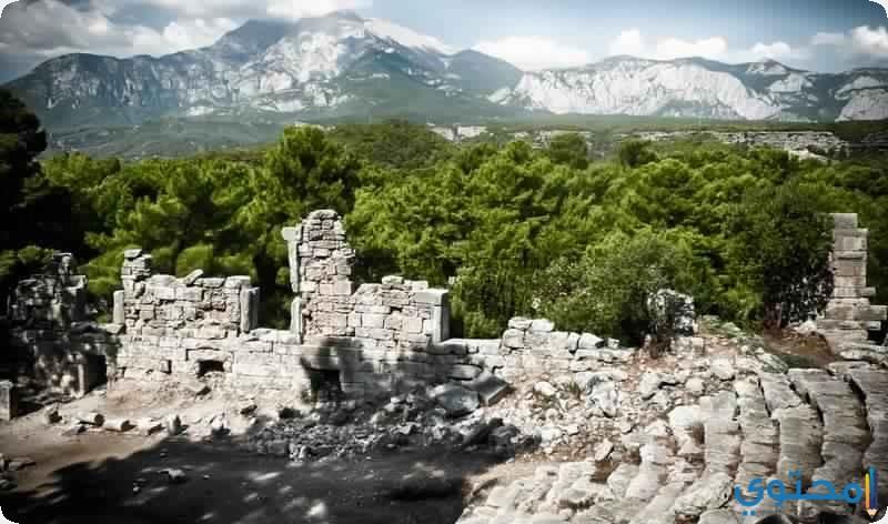 مدينة فاسيليس