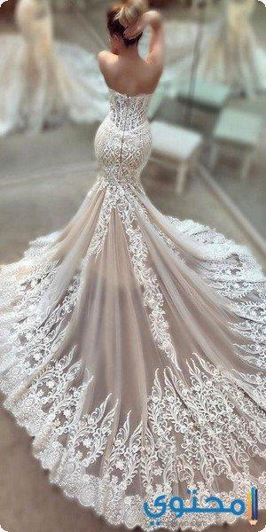 آخر صيحات الموضة لفساتين الزفاف ذيل السمكة