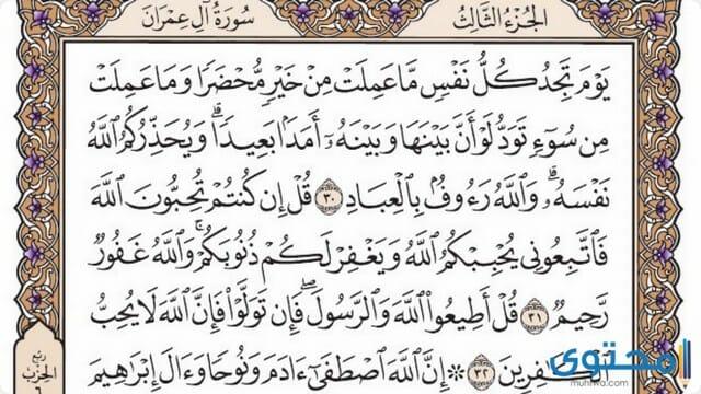 فضل قراءة سورة أل عمران2