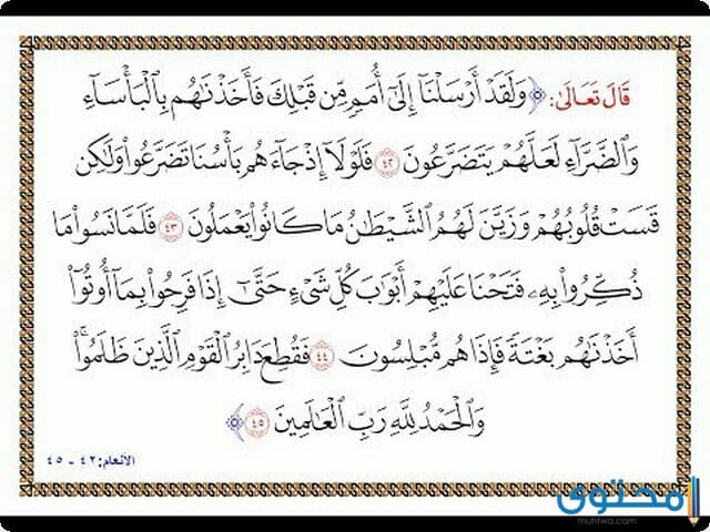 فضل قراءة سورة الأنعام4