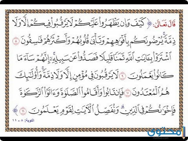 فضل قراءة سورة التوبة وخواصها - موقع محتوى
