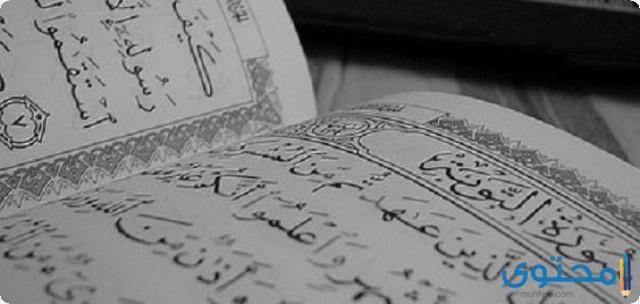 فضل قراءة سورة التوبة7