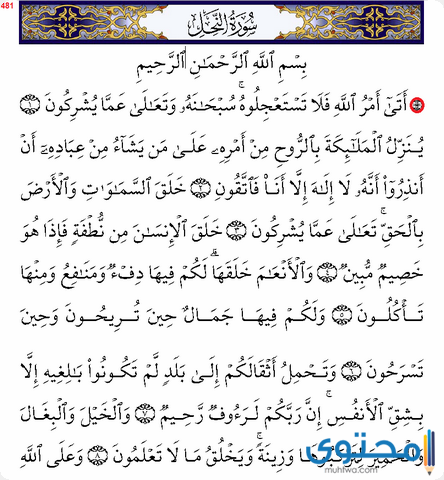 فضل قراءة سورة النحل1