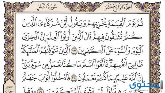 فضل قراءة سورة النحل4