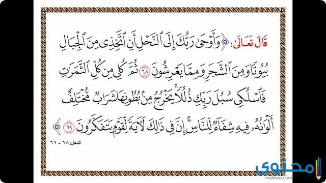فضل قراءة سورة النحل6