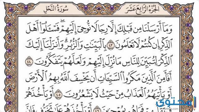 فضل قراءة سورة النحل7