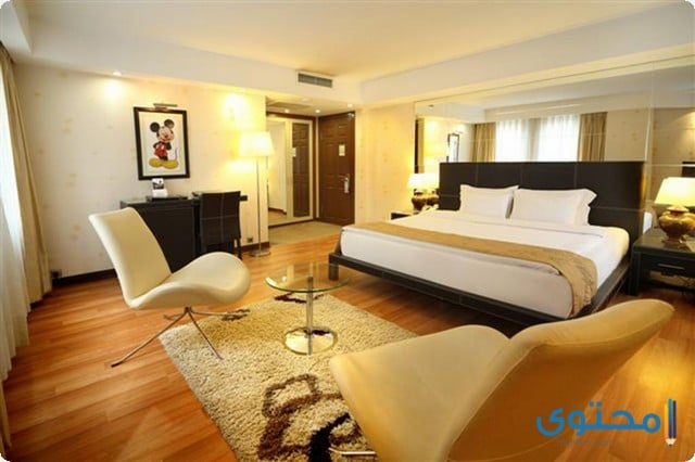 فندق كارتون اسطنبول